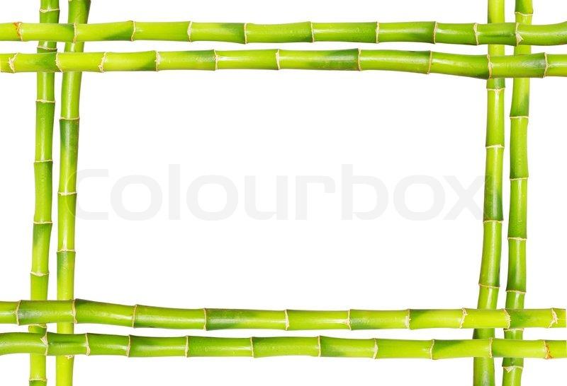 Bamboo frame   Stock Photo   Colourbox