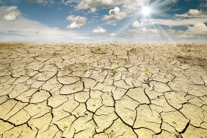 Land With Dry And Cracked Ground Desert Stock Photo