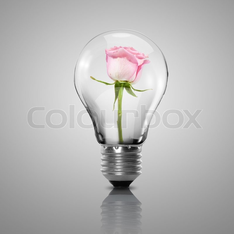 Electric Light Bulb And Flower Inside It As Symbol Of Green Energy | Stock  Photo | Colourbox