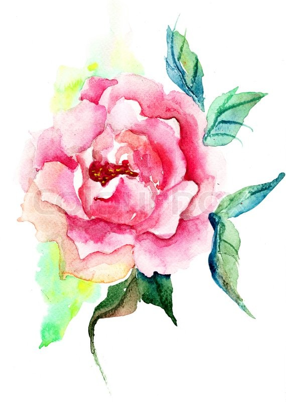 Beautiful roses flowers watercolor painting stock photo for Pretty flower paintings