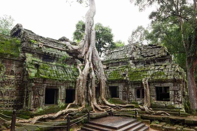 Ancient Ta Prohm Or Rajavihara Temple At Angkor Siem Reap