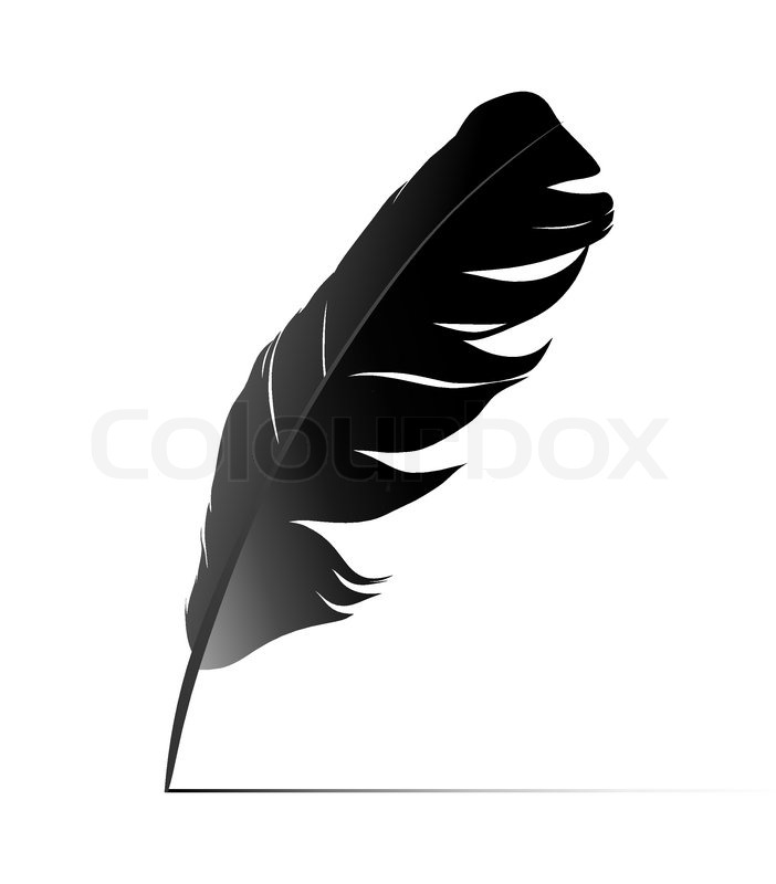 Feather | Stock Vector | Colourbox
