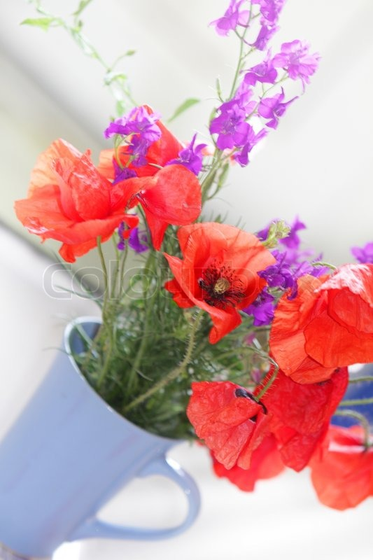 Poppy flowers in bouquet   Stock Photo   Colourbox
