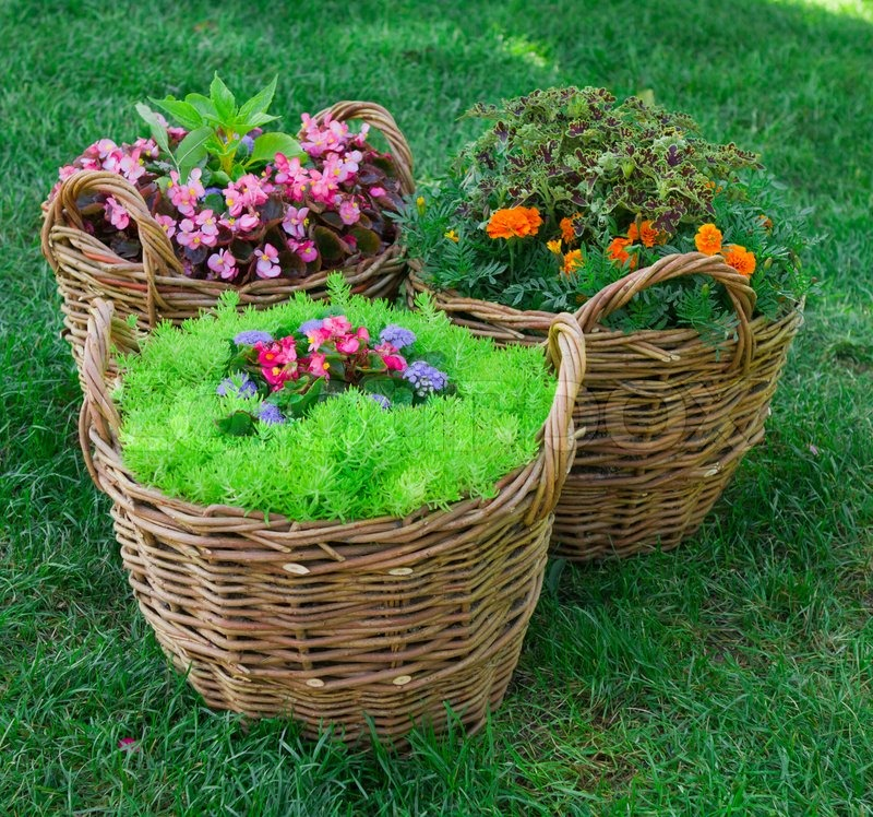 Garden Landscape beautiful basket of flowers in the garden landscape | stock photo