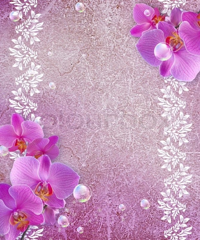 Orchid and openwork frame   Stock Photo   Colourbox