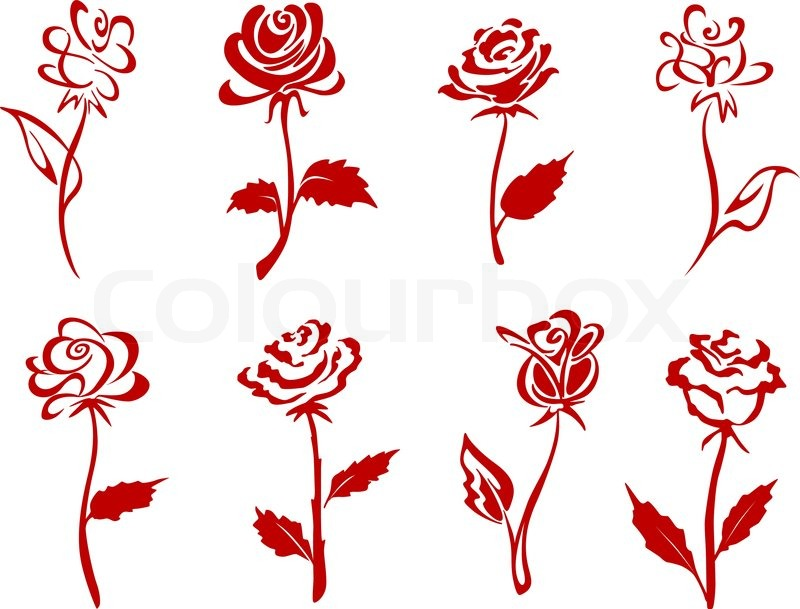 beautiful red roses stock vector colourbox
