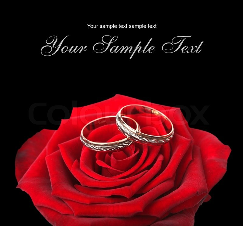 Wedding Rings And On A Red Roses Stock Photo Colourbox