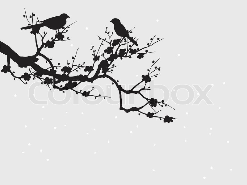 Silhouette Of Birds On Sakura Blooming Stock Vector Colourbox