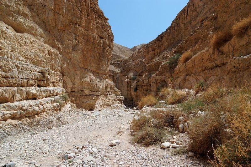 Desert canyon | Stock Photo | Colourbox