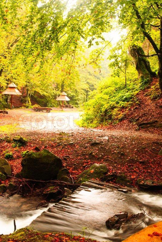 Fall camping with rain, stock photo