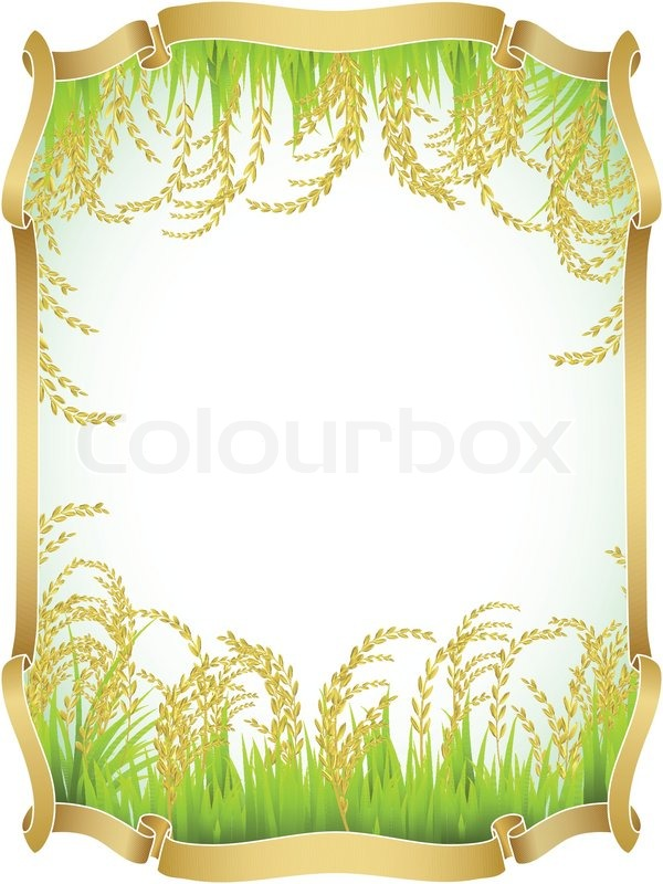 Frame and background of Thai white rice. | Stock Vector ...