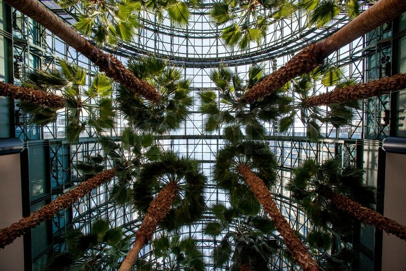 world financial center winter garden atrium manhattan new york stock photo colourbox - Winter Garden Nyc