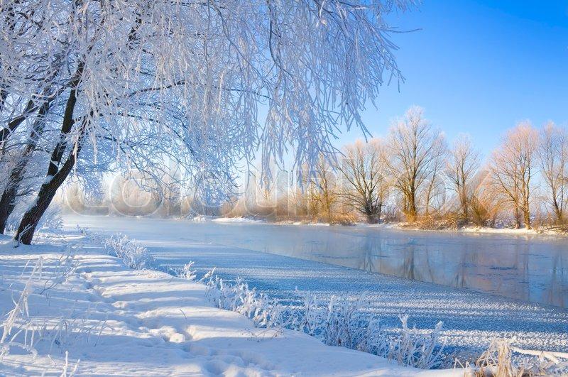 Winter season | Stock Photo | Colourbox
