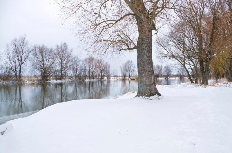 Winter Season Stock Photo Colourbox