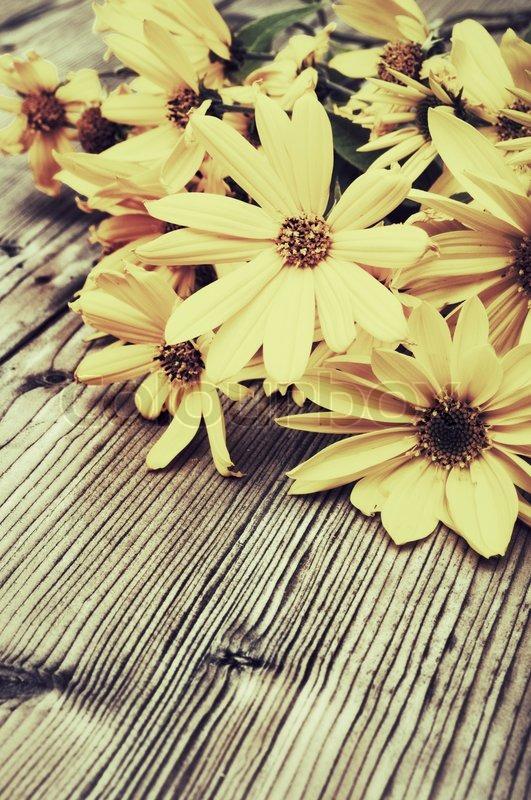 Yellow flowers vintage look stock photo colourbox mightylinksfo