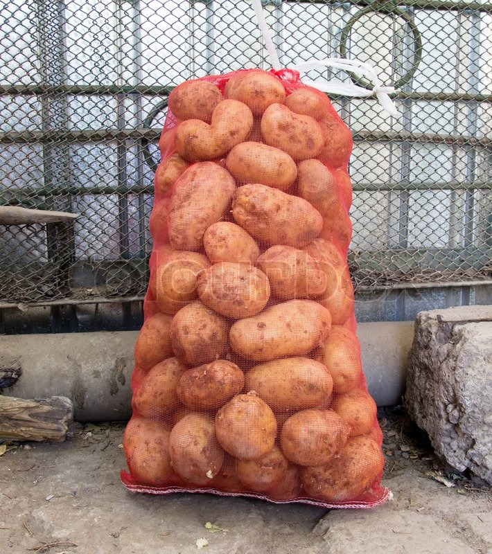 Sack of potatoes | Stock Photo | Colourbox