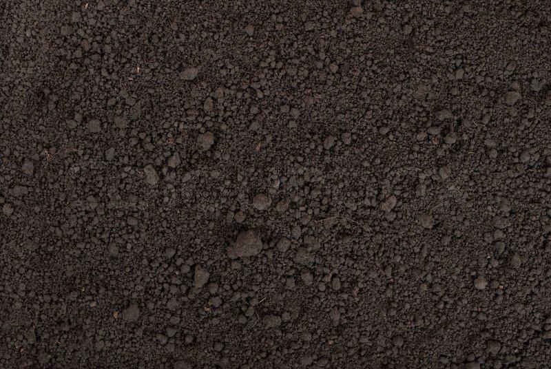 Schwarze Erde