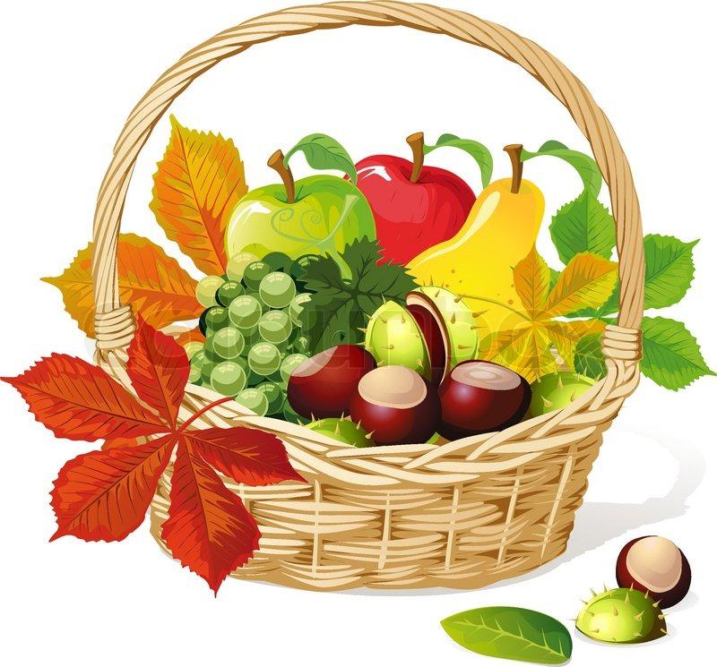 Herbst Korb Mit Kastanien Apfel Und Vektorgrafik Colourbox