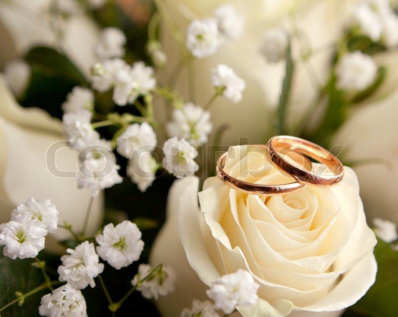 Wedding rings flowers  Gold wedding rings on flower | Stock Photo | Colourbox