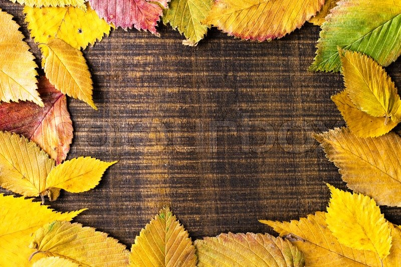 Autumn Leaves frame on dark wood background | Stock Photo | Colourbox