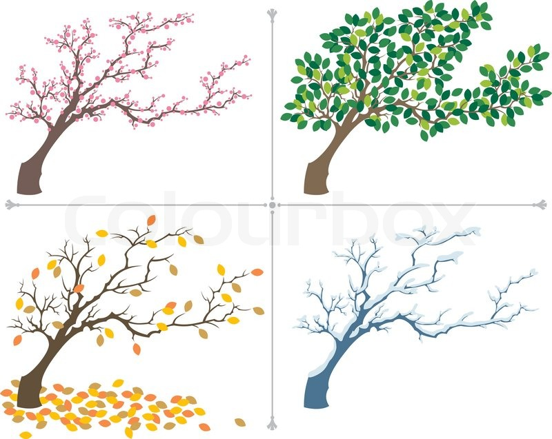 jahreszeiten | vektorgrafik | colourbox