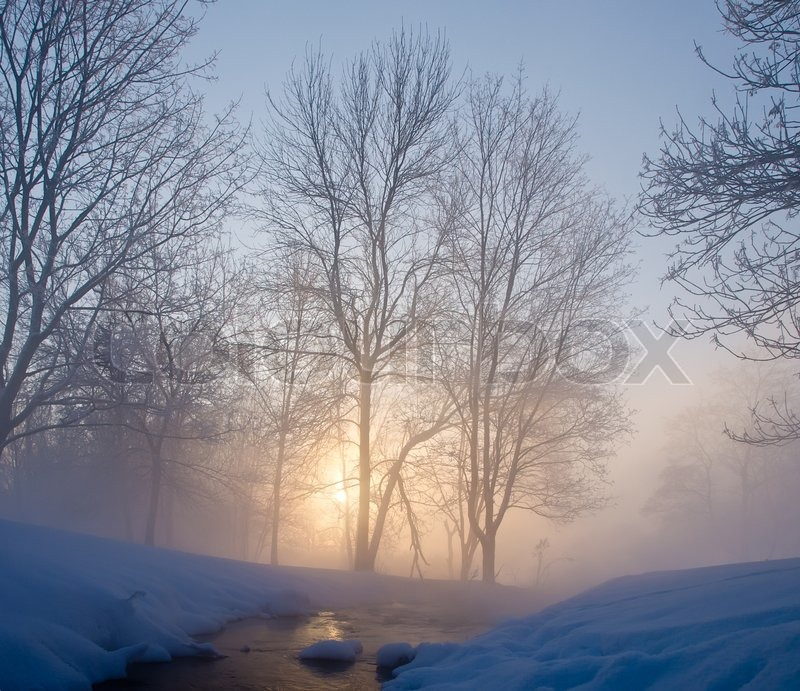 Beautiful Winter Morning Stock Image Colourbox