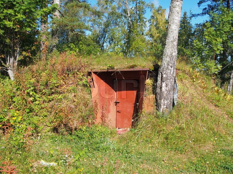Underground Wood Shelter : Entrance in an air raid shelter underground the forest