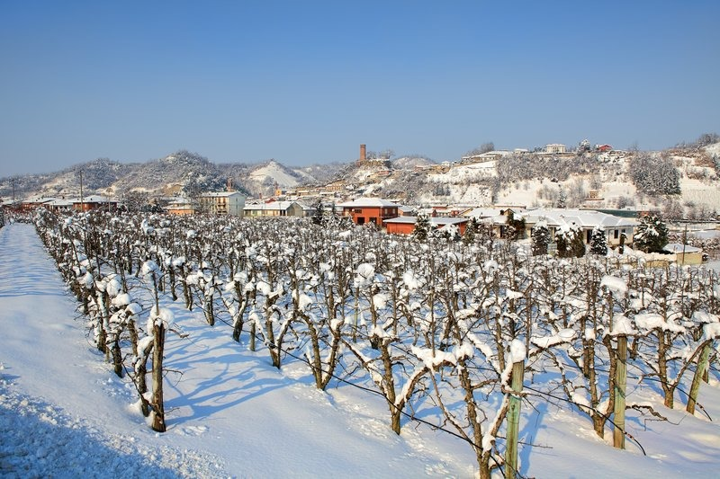 Vineyards On Snowy Fields And Small Town On Background At Winter - Italy in the winter