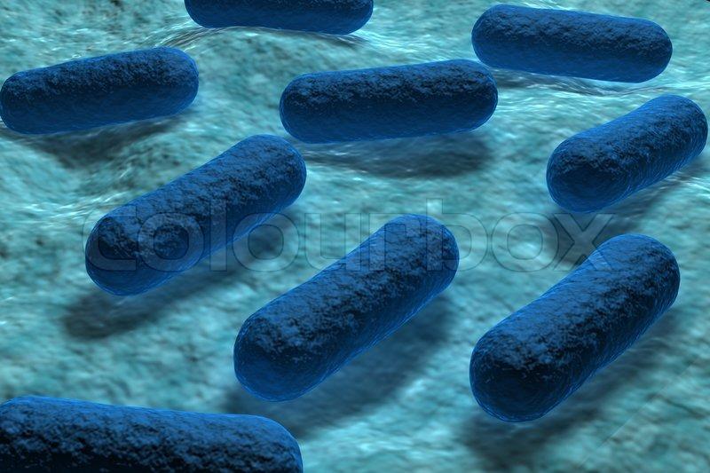 E coli Bacteria Infection Symptoms Causes Treatments