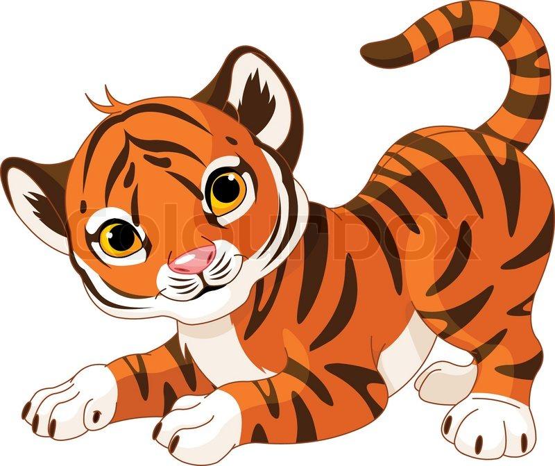 Playful Tiger Cub Stock Vector Colourbox