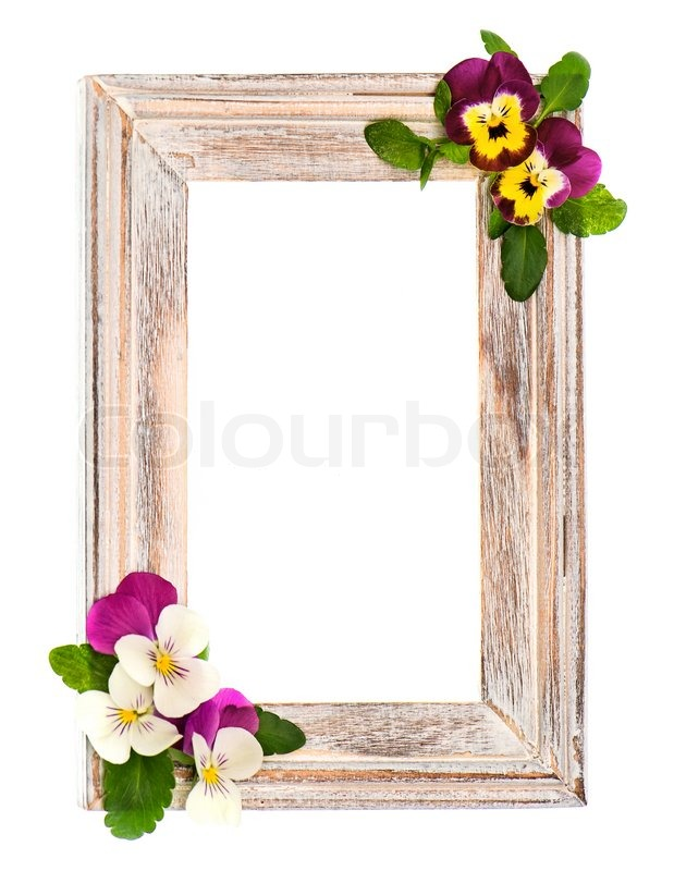 Wooden frame with pansy flowers decoration | Stock Photo | Colourbox