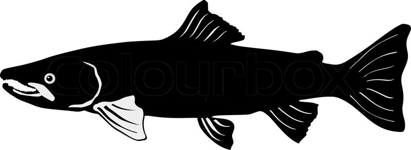 Seafood clipart black and white