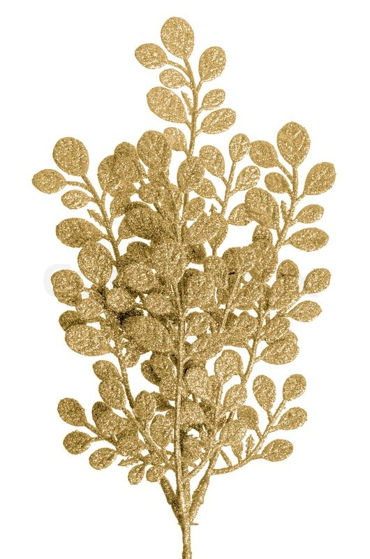 Christmas Decorative Golden Leaves Stock Photo Colourbox