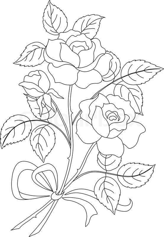 Contour Line Drawing Jobs : Flowers rose contour stock vector colourbox