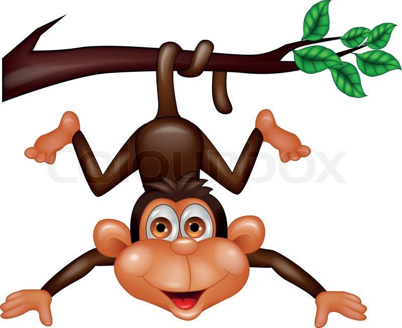Cartoon monkeys hanging from a tree - photo#13