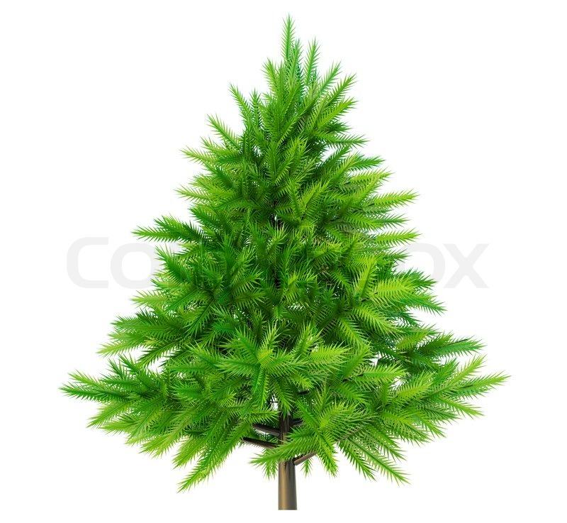 Christmas Tree Manufacturer Thailand : Christmas tree stock photo colourbox
