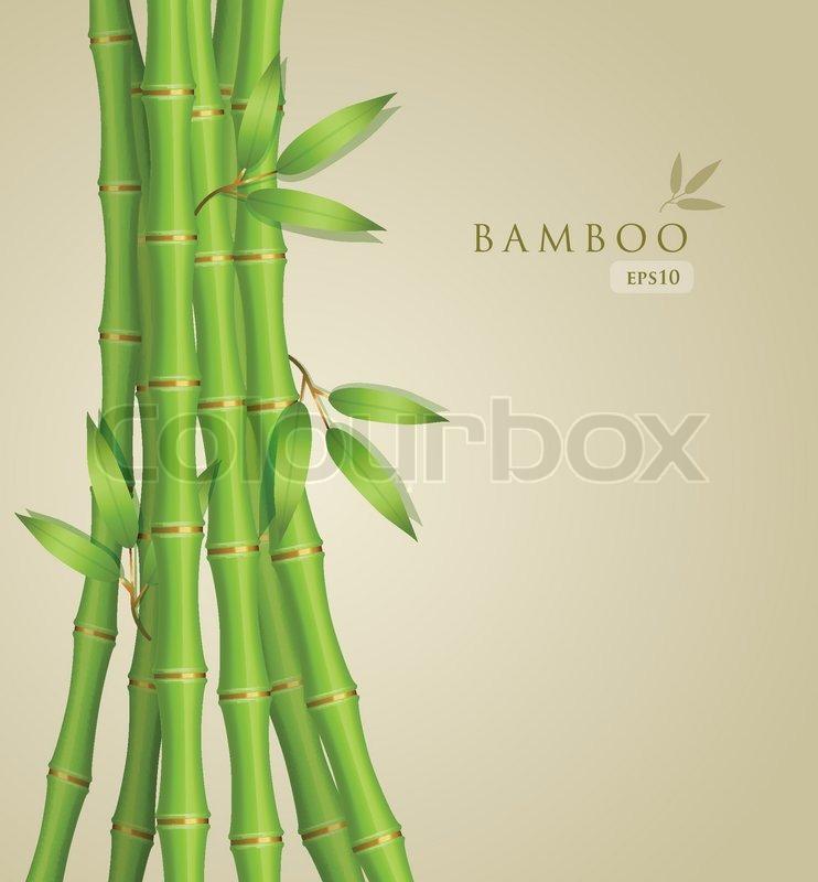 Hintergrund Mit Grunen Bambus Vektorgrafik Colourbox