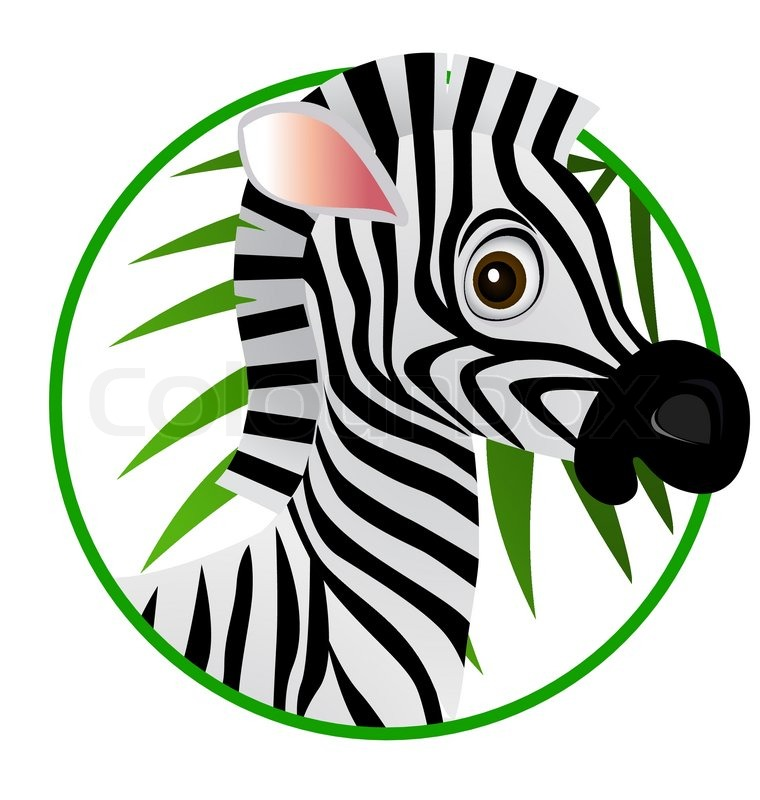 Zebra head cartoon images - photo#9