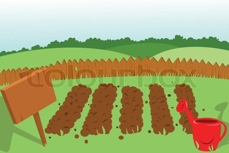 vegetable garden stock vector colourbox