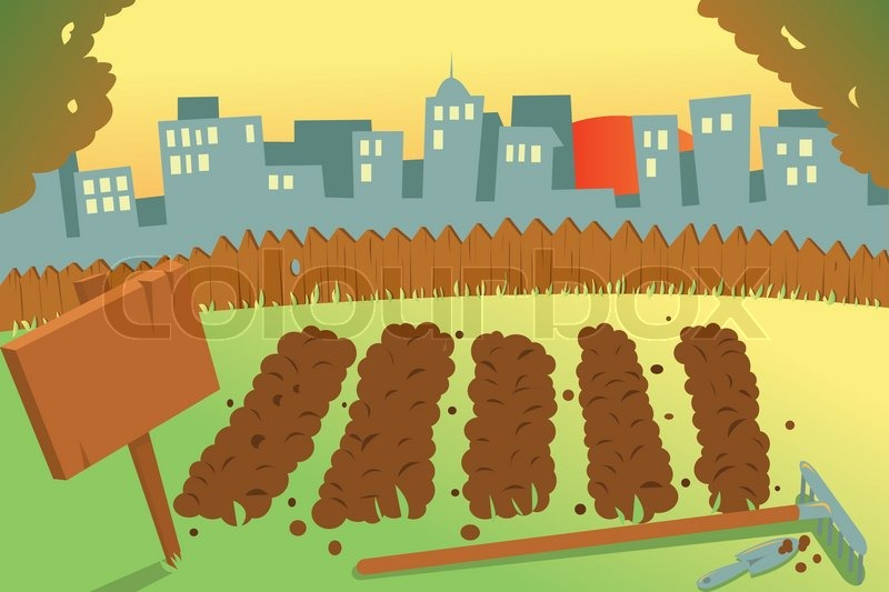 vegetable garden in a city stock vector colourbox