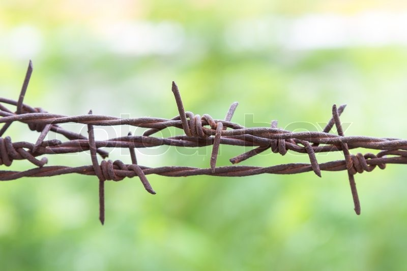 The line of barbed wire stock photo colourbox