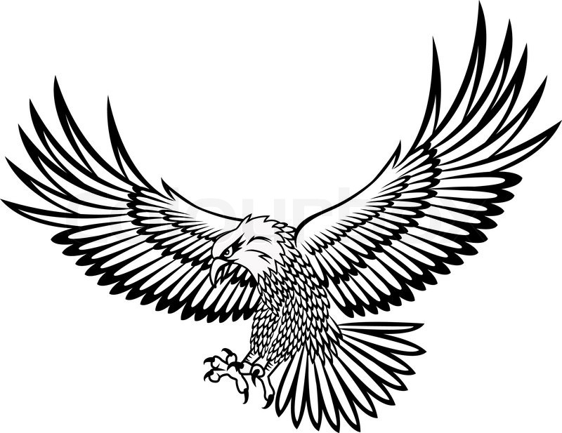 Eagle Tattoo Line Drawing : Adler stock vektor colourbox