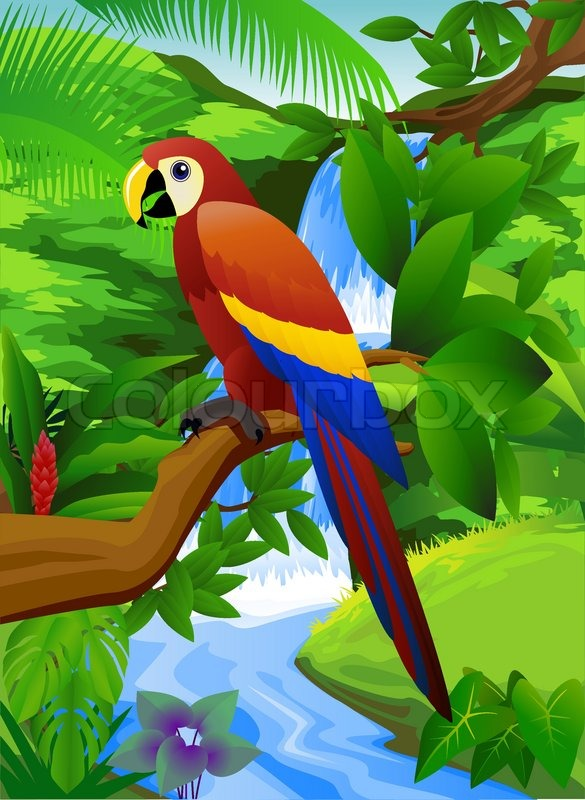 Beautiful parrot in nature | Vector | Colourbox