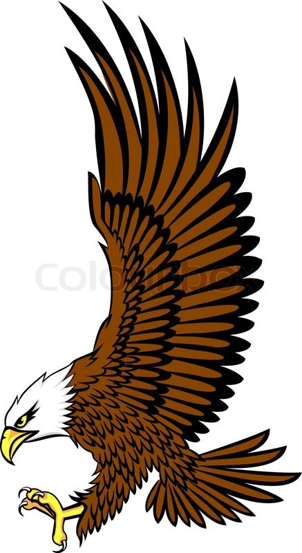 bald eagle stock vector colourbox rh colourbox com bald eagle vector free download bald eagle outline vector
