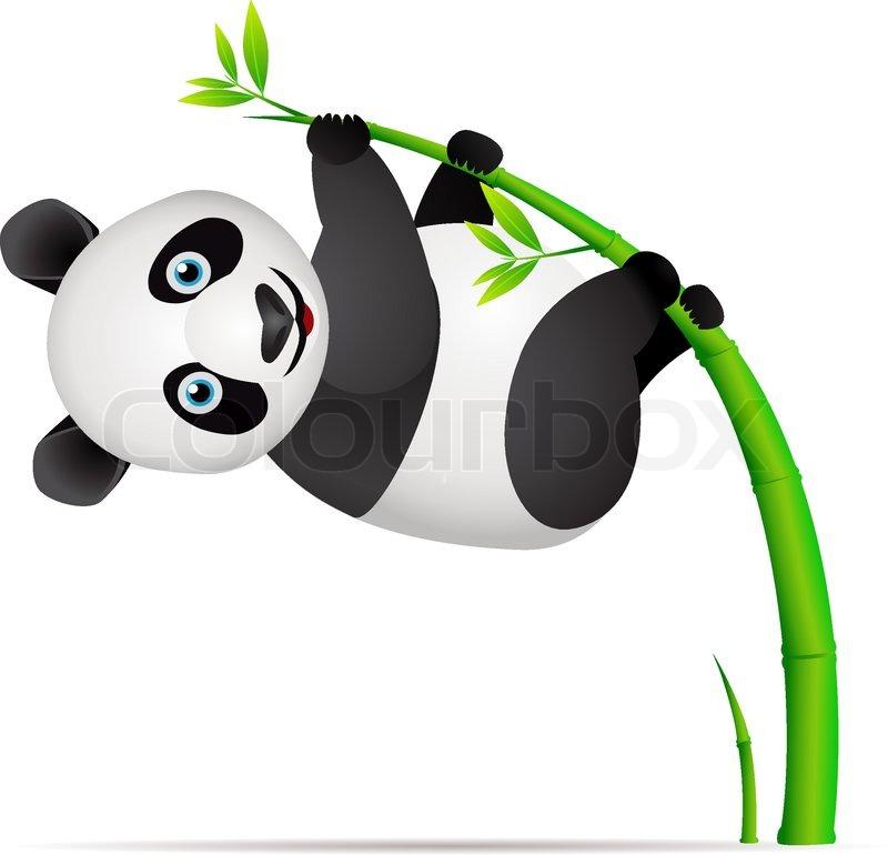 Panda Und Bambus Baum Vektorgrafik Colourbox