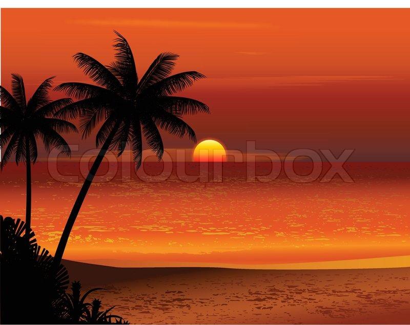 Tropical Beach Sunset Stock Vector Colourbox