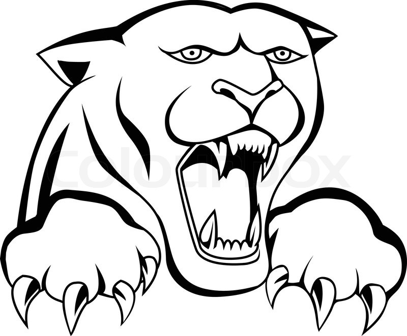 panther drawing outline - photo #11