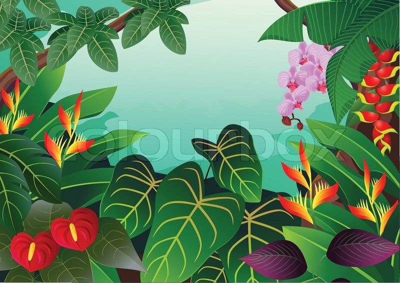 tropical forest background stock vector colourbox