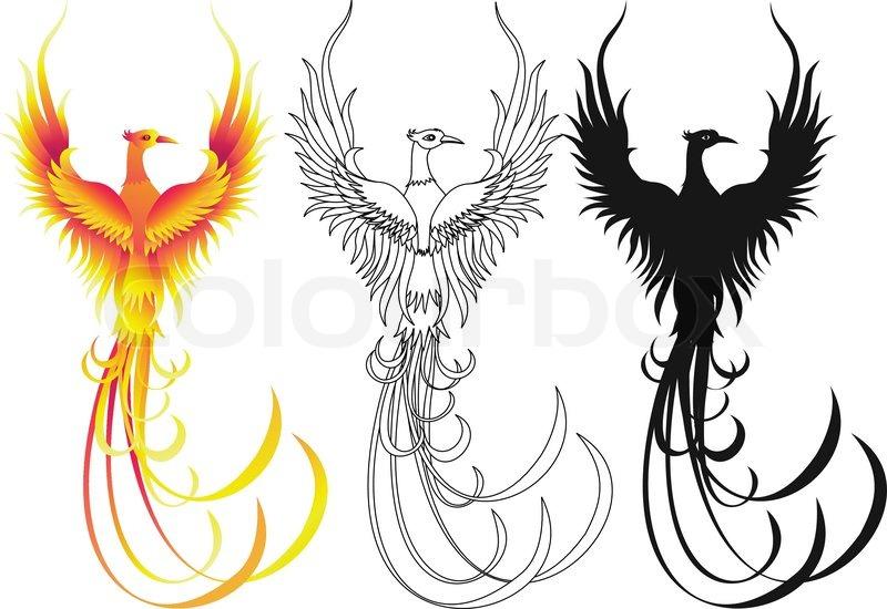 phoenix bird stock vector colourbox