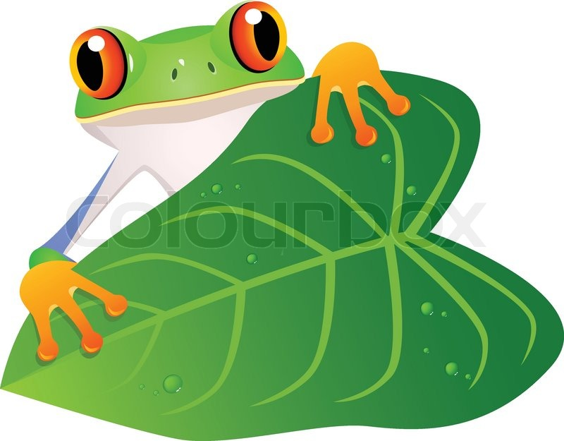 Frog Cartoon Stock Vector Colourbox Take a look at any deciduous tree, and in most and depending on the specific kind of tree it is, the top shape will vary… but usually it's circular or ovular in. frog cartoon stock vector colourbox